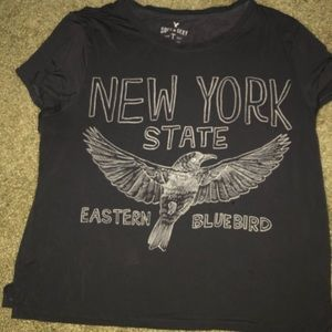 New York State Shirt